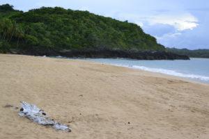 Playa Morón